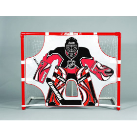 Goals and nets for street hockey